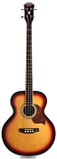 XV400 Sunburst Acoustic-Electric Bass Solid Spruce Top Fishman preamp