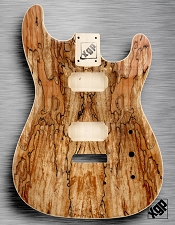 XGP Curly Spalted Maple Strat Style Body 2 Humbuckers