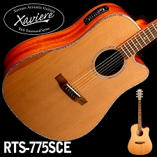 Zebrawood CEDAR Top Dreadnaught Xaviere cutaway Acoustic/Electric