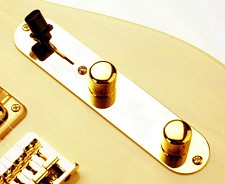 Telecaster Gold control plate vintage Style