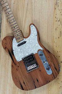 By David A -- Rat-Rod Tele - GFS Neck and Hardware
