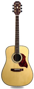 XV_580 - OUR BEST! Solid Spruce Top Solid Rosewood Back and Sides with Binding
