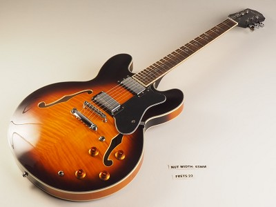 LUTHIER SPECIAL - PRO900 Semi Hollow, Coil Taps, Flamed Maple Kwikplug Alnico Fat Pats Vintage Sunburst