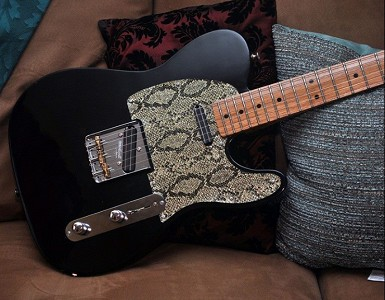 By Bill H -- Snake Skin Tele (GFS Lil Killer Pickups and Hardware)
