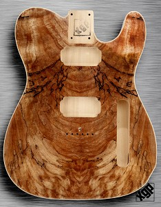 XGP Curly Spalted Maple Tele Style Body 2 Humbuckers