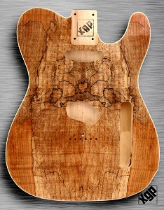 XGP CURLY SPALTED MAPLE Single-Cutaway Style Body 2 Single Coils