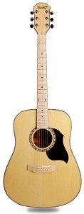 XV_200S - Solid Spruce Top Maple Back and sides with Maple Bridge