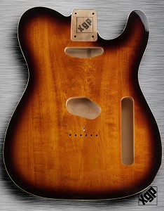XGP Professional Double Bound Tele Vintage Sunburst Solid Swamp Ash